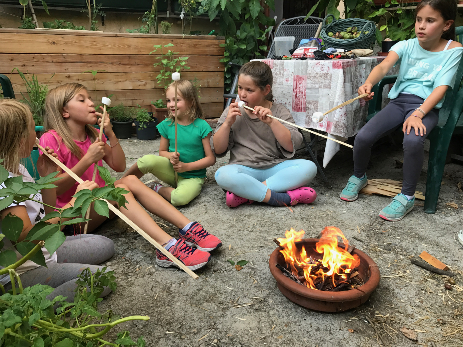 marshmellows grillen